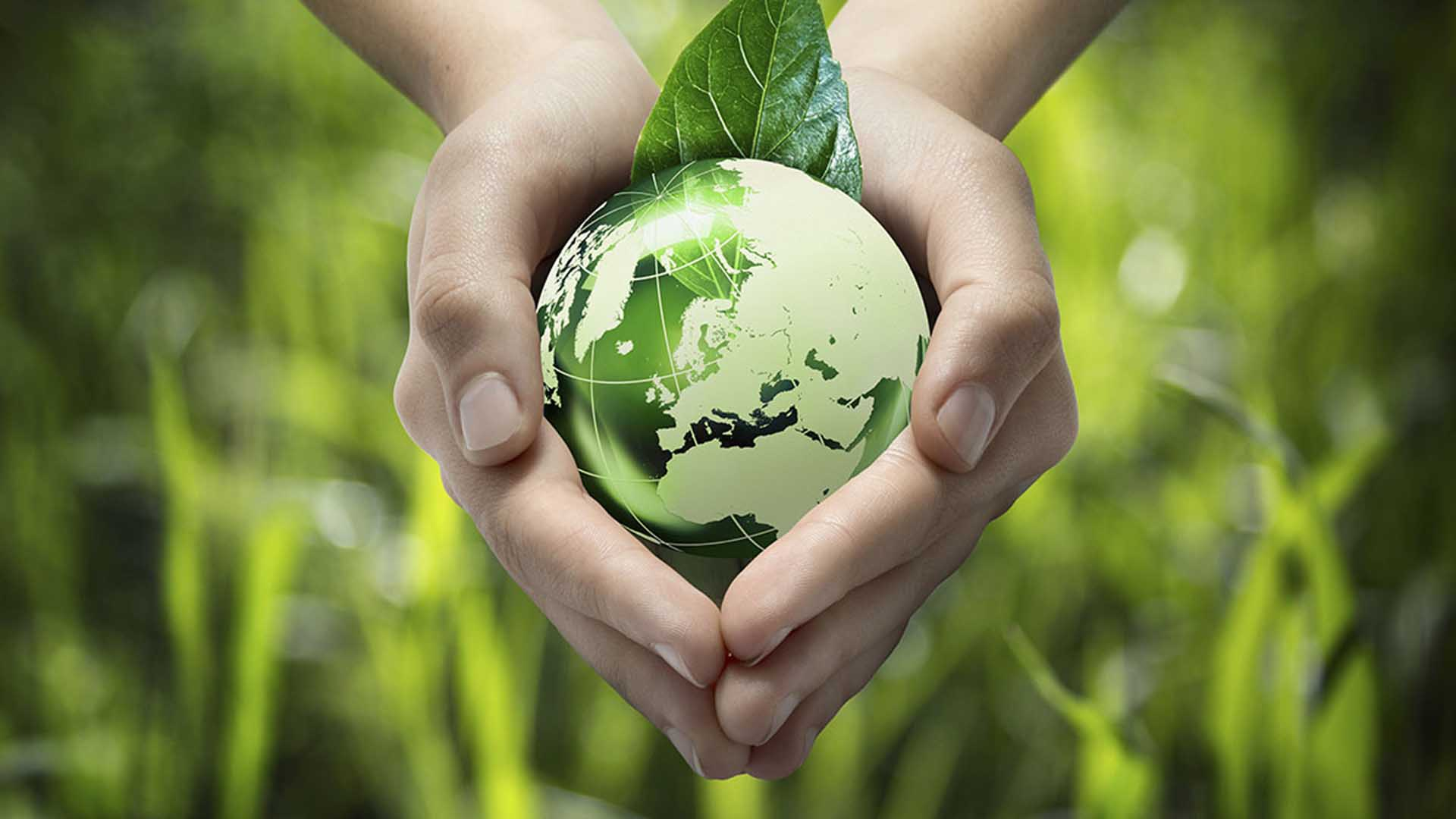 Use Eco Friendly Items To Save Environment From Bad Effects