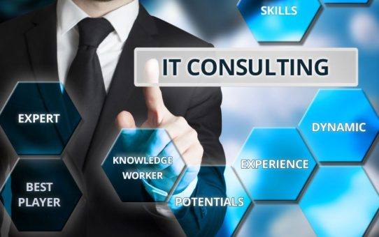 How to be a successful IT consultant?