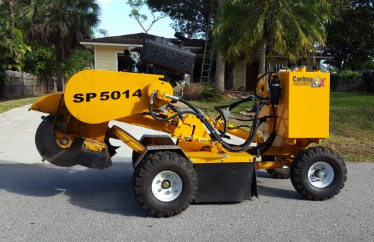 Important to get machines or professionals for stump removal